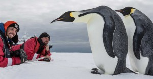 Kaiserpinguin-Paar im Rossmeer © Rolf Stange - Oceanwide Expeditions